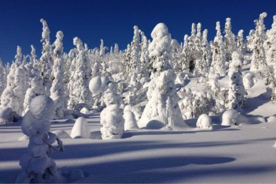 esqui en laponia