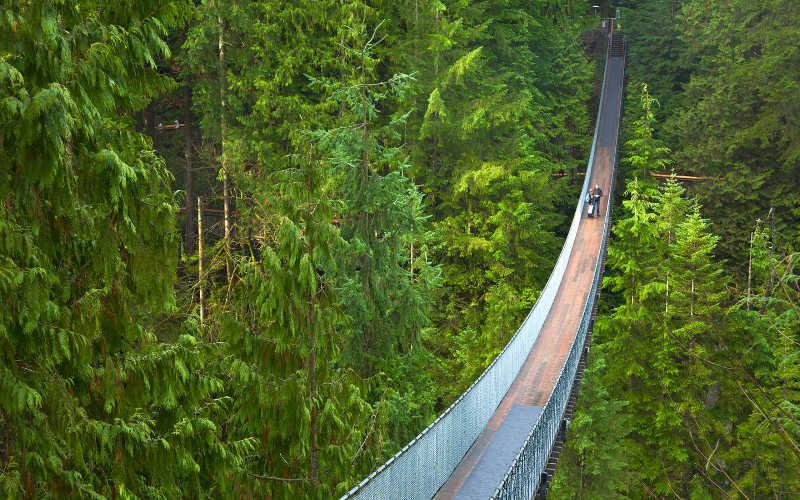 puente suspendido capilano vancouver