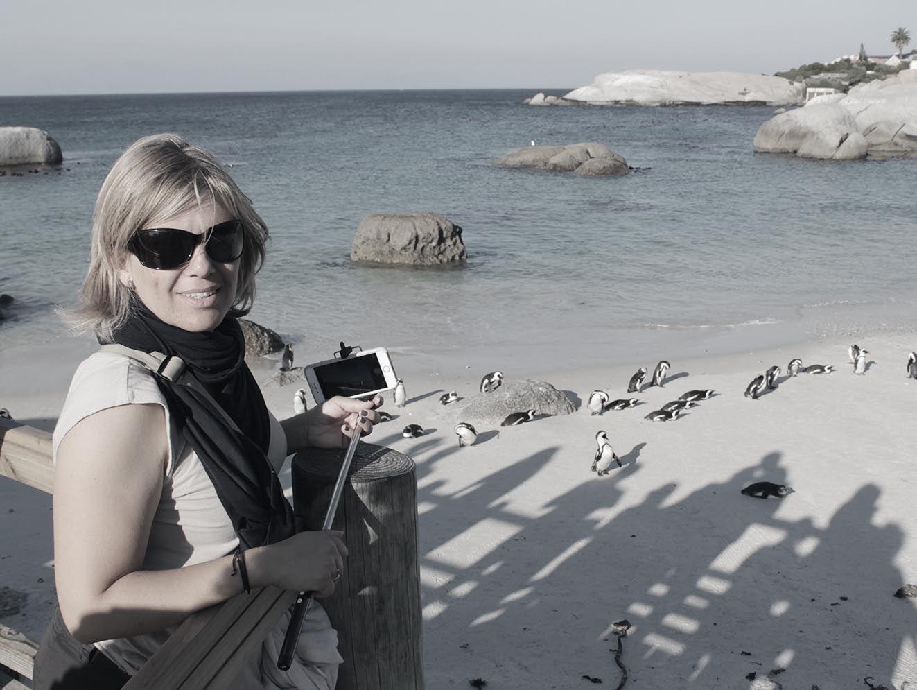 next-destinium-somos-viajeros_0012_pinguinos