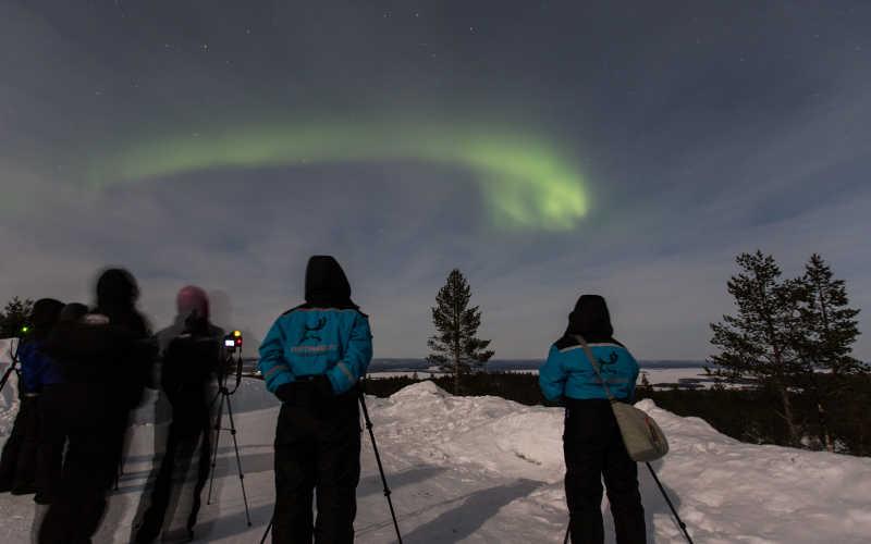buscar auroras boreales con cazador especialista