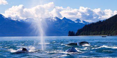 viajes canada costa oeste alaska