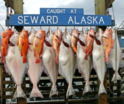 viaje alaska seward cruise