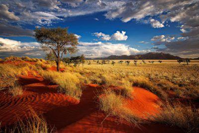viaje namibia safari en 4x4