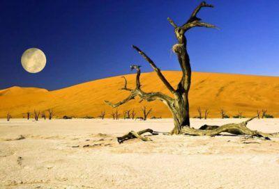 deadvlei sossusvlei namibia viaje travel