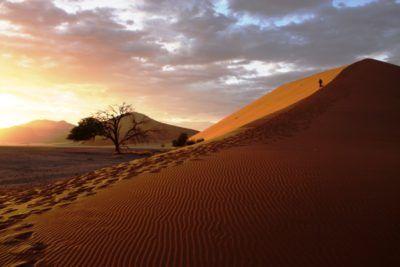 dune 45 namibia sunset