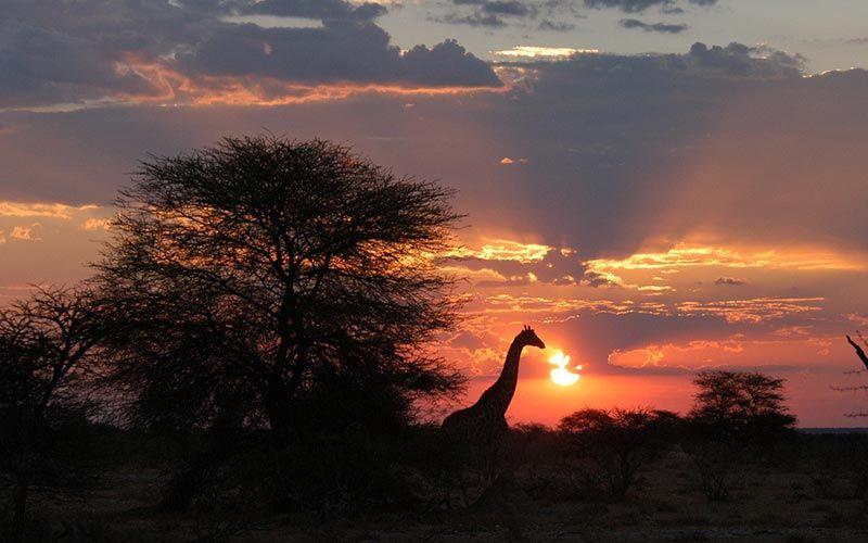 paisaje-namibia-puesta-de-sol