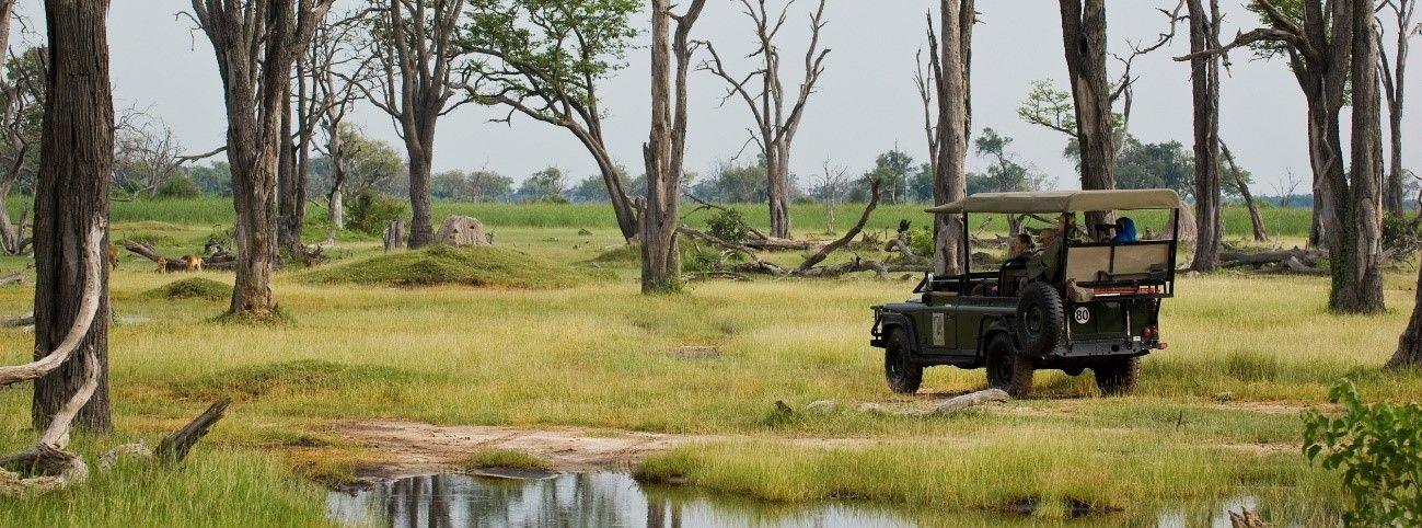 viaje de lujo por botswana