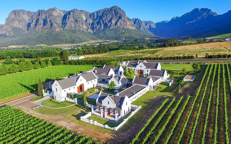 vinos-stellenbosch-sudafrica