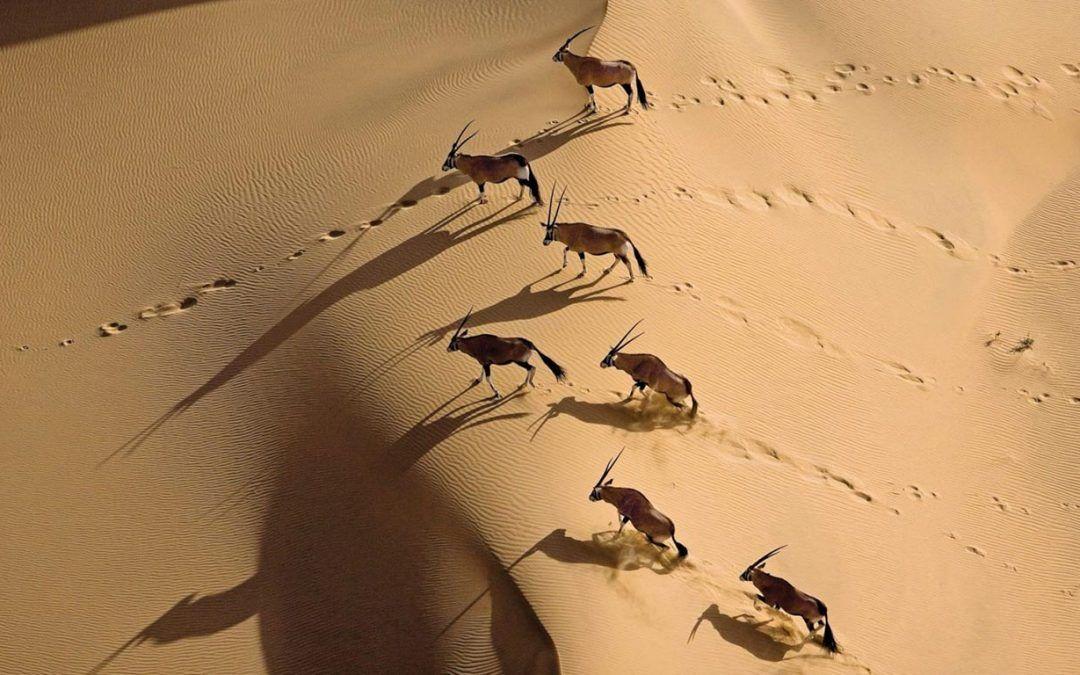Namibia, un lugar por descubrir