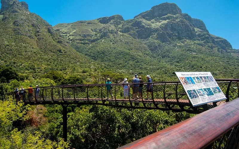 parque-ninos-sudafrica-jardin-botanico-ciudad-del-cabo