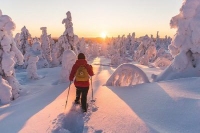 viajes-laponia-nieve