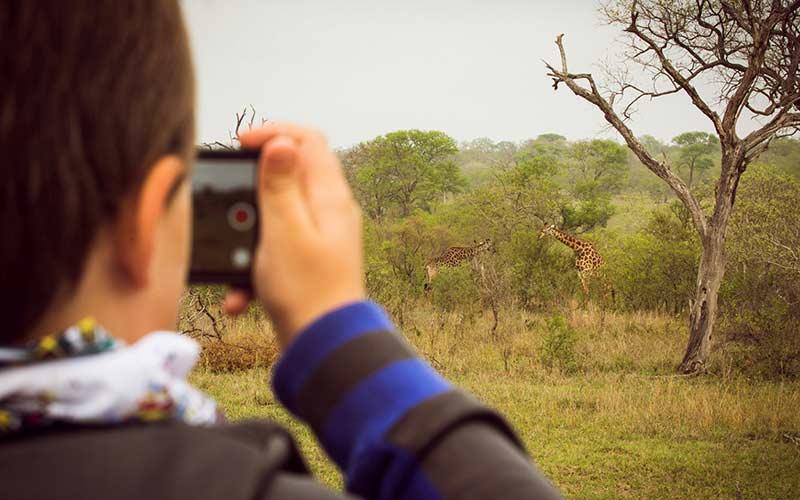 ver-animales-ninos-viaje-sudafrica