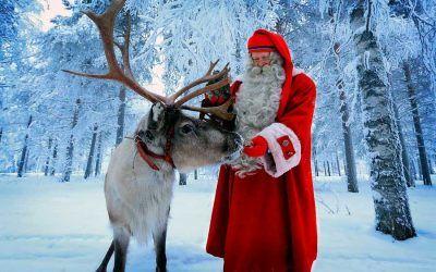 Los renos de Laponia