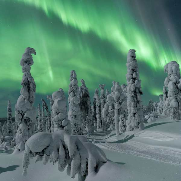 viaje-laponia-auroras-boreales-inari-saariselka