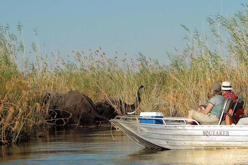 viaje-barco-mokoro-rio-elefantes