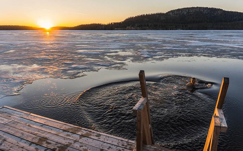 bano-los-lagos-de-finlandia-verano