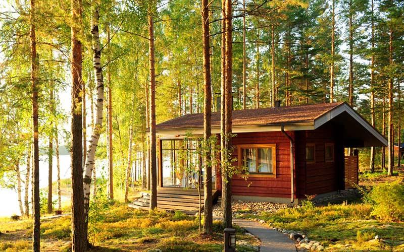 cabana-bosque-finlandia-natura-verano