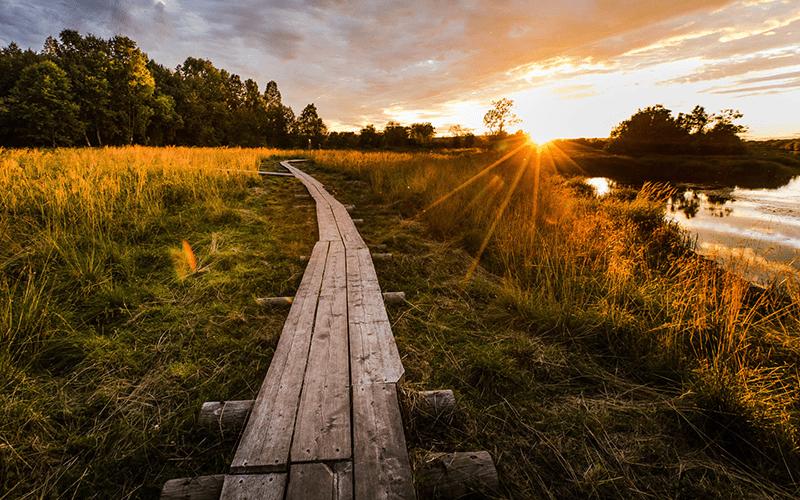 senderismo-finlandia-verano