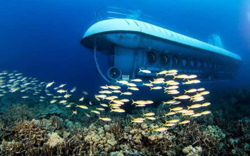 buceo-maldivas-submarino-peces-viajes