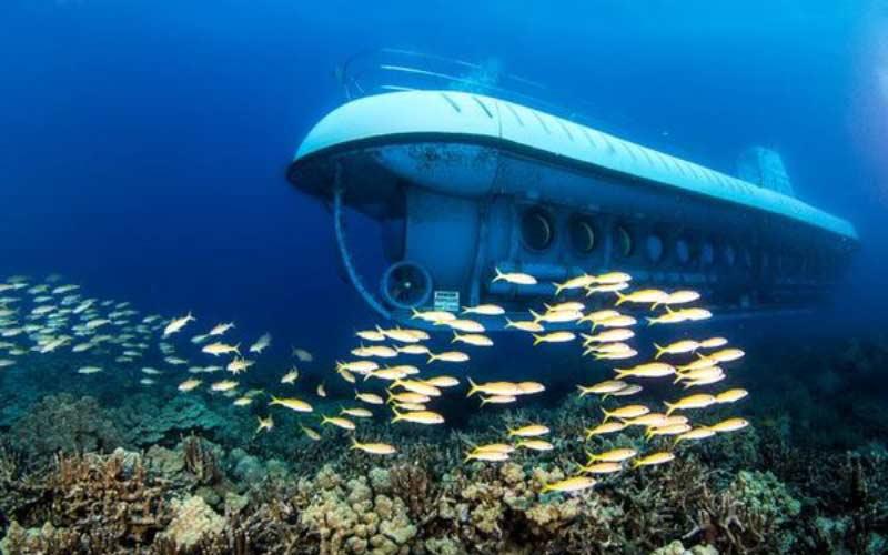 barco-submarino-maldivas-con-ninos-actividades