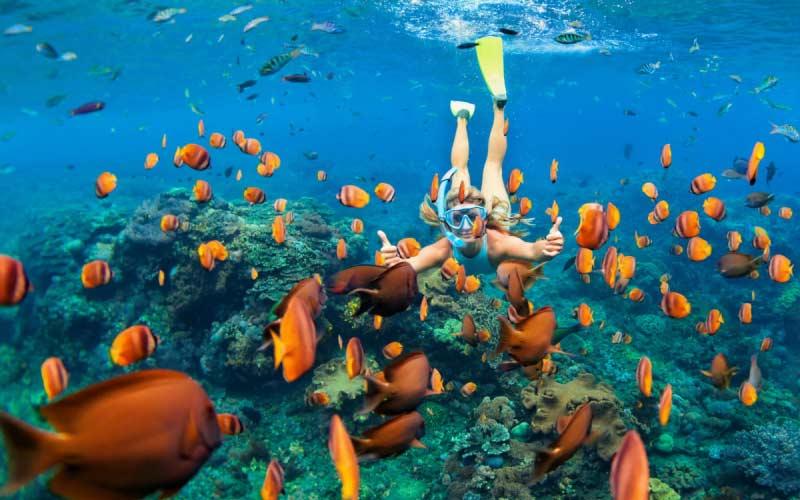 snorkel-en-maldivas-con-ninos