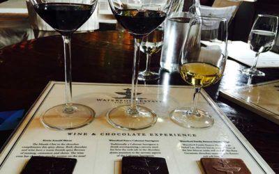 degustacion-vinos-sudafrica