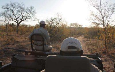 safari-sudafrica-kruger-lodges-de-lujo