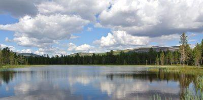 viajar-a-laponia-parque-nacional-urho-kekkonen