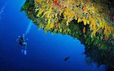mejores-resorts-maldivas-snorkling-anantara-kihavah