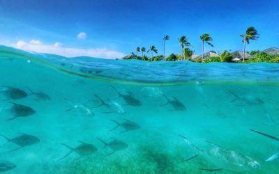 mejores-resorts-maldivas-snorkeling-hurawalhi-island-resort