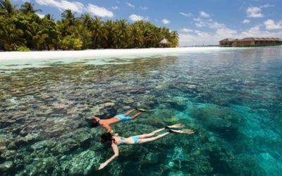 mejores-resorts-maldivas-snorkling-resort-w-maldivas