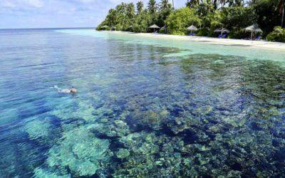 mejores-resorts-maldivas-snorkling-robinson-club