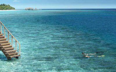 mejores-resorts-maldivas-snorkeling-vakkaru-maldives-resort.